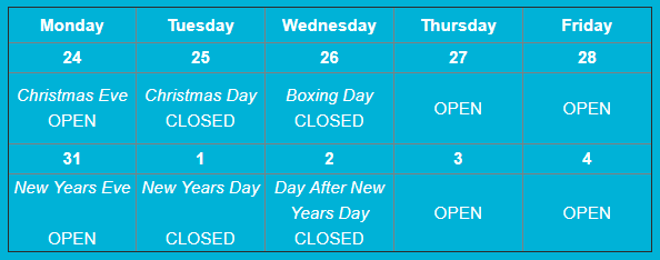 CCP 2018 Xmas Opening hours